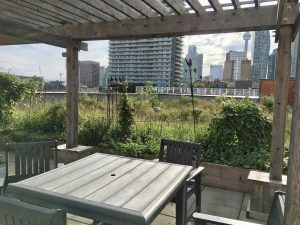 Photo: Roof deck of the medium rise building with a table and chairs and the city skyline behind
